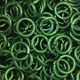 green_rings.jpg